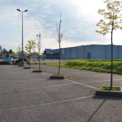 Location Local commercial Marly 1565 m²