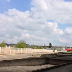 Location Entrepôt Sandouville 6666 m²
