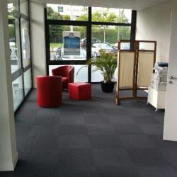 Location Bureau Vannes 80 m²