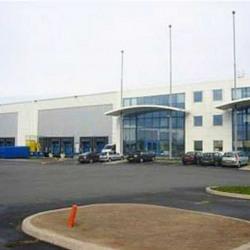 Location Entrepôt Saint-Fargeau-Ponthierry 10213 m²