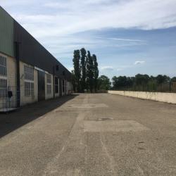 Vente Local d'activités Saint-Priest 600 m²