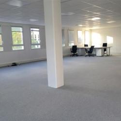 Location Bureau Vélizy-Villacoublay 300 m²