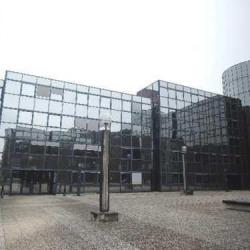 Location Bureau Noisy-le-Grand 164 m²