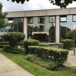Location Local d'activités Colombes 2800 m²