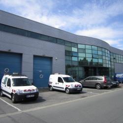 Location Local d'activités Valenton 339 m²