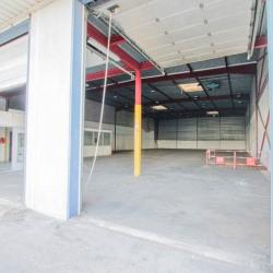 Location Local d'activités Saint-Denis 1118 m²