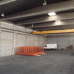 Location Local d'activités Chassieu 1260 m²