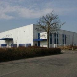 Location Entrepôt Ostwald 2083 m²