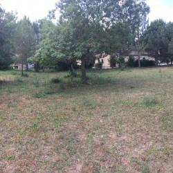 Terrain  de 1215 m²  Plascassier  (06130)
