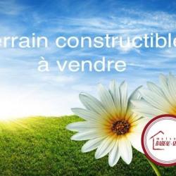 Terrain  de 722 m²  Saint-Firmin-sur-Loire  (45360)