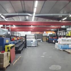 Location Entrepôt La Trinité 1000 m²