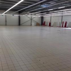 Vente Local commercial Saint-Gaudens 1609,23 m²
