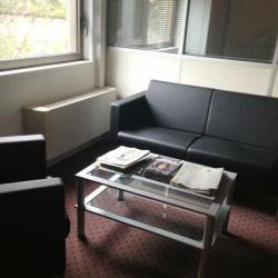 Location Bureau Bourg-la-Reine 346 m²