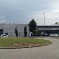Location Local d'activités Saint-Fons 1585 m²