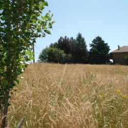 Vente Terrain Saint-Antoine-l'Abbaye 2000 m²
