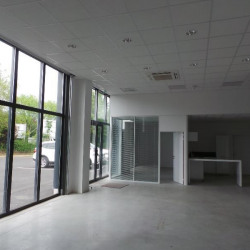Location Local d'activités Serris 260 m²