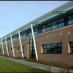 Location Bureau Loos 144 m²