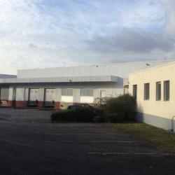 Location Entrepôt Orvault 4487 m²