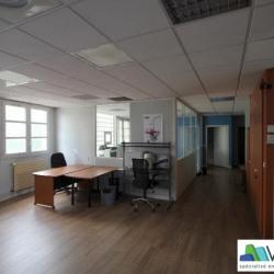 Location Local d'activités Saint-Maur-des-Fossés 253 m²