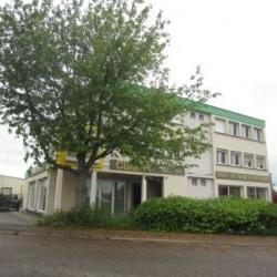 Location Local d'activités Erstein 181 m²