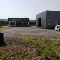 Vente Local d'activités Portes-lès-Valence 562 m²