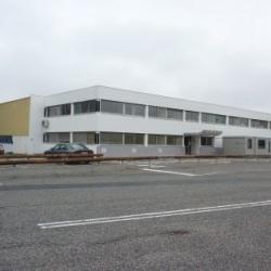 Vente Local d'activités Saint-Jean-d'Illac 13915 m²