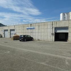 Location Local d'activités Saint-Martin-d'Hères 408 m²