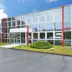 Location Local d'activités Bezons 285 m²