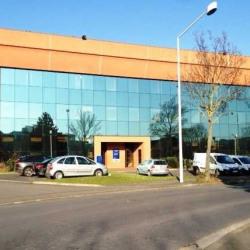 Location Local d'activités Nanterre 1438 m²