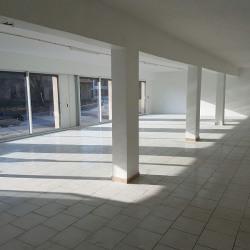 Location Local d'activités Cagnes-sur-Mer 180 m²
