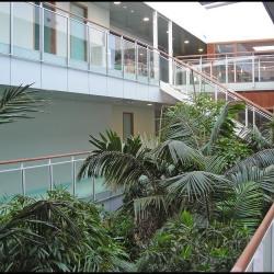 Location Bureau Montpellier 112 m²