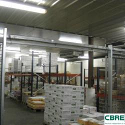 Vente Local commercial Cournon-d'Auvergne 1100 m²