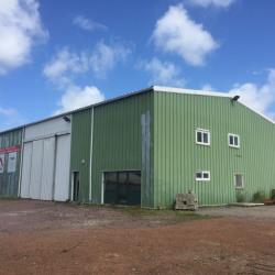 Location Local d'activités Montivilliers 635 m²