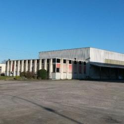 Vente Local d'activités Vénissieux (69200)