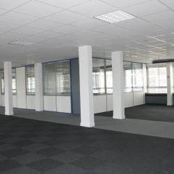Location Bureau Rueil-Malmaison 413 m²