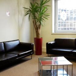 Location Bureau Courbevoie 1065 m²