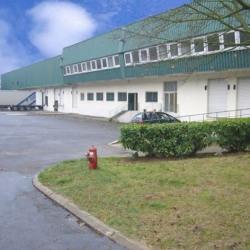 Vente Local d'activités Bussy-Saint-Martin 3950 m²