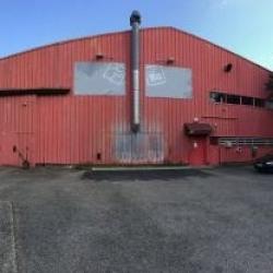 Location Local d'activités Genas 1050 m²