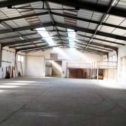 Location Local d'activités Perpignan 1180 m²