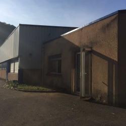 Vente Entrepôt Fleurieu-sur-Saône 1200 m²
