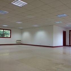 Location Local d'activités Ormes 340 m²