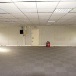Location Bureau Torcy 159 m²
