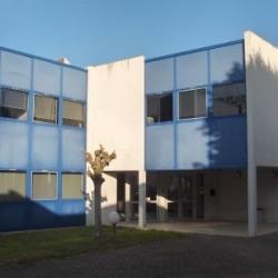 Location Bureau Ramonville-Saint-Agne 64 m²