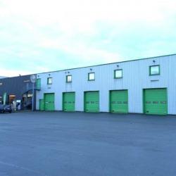 Location Local d'activités Halluin 700 m²