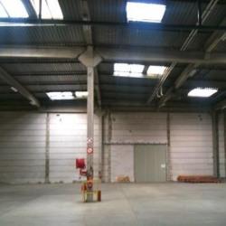 Vente Local d'activités Marolles-en-Brie 247 m²