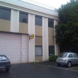 Location Local d'activités Lognes 240 m²