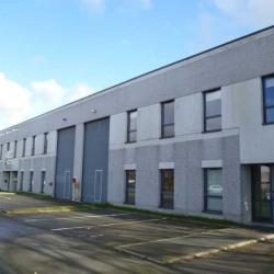 Location Local d'activités Villeneuve-d'Ascq (59650)