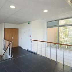 Vente Bureau Caluire-et-Cuire 224 m²