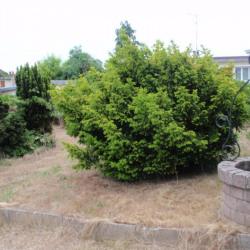 Terrain  de 920 m²  Le Coudray-sur-Thelle  (60430)