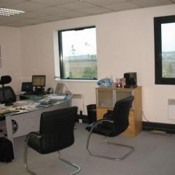 Location Bureau Noisy-le-Roi 30 m²